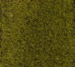 Faller 170772  Early Summer Meadow Grass Fibre (30g)